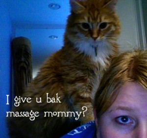 Henry, my cat, tries to give me a back massage
