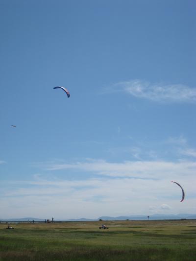 Kites in Garry Point Park, Richmond