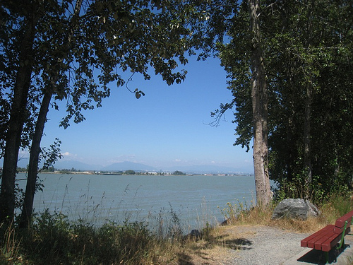 View of the Fraser River from Deas Island