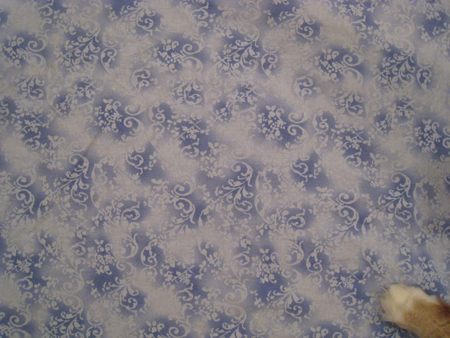 Fabric destined to become a pillow case for the couch
