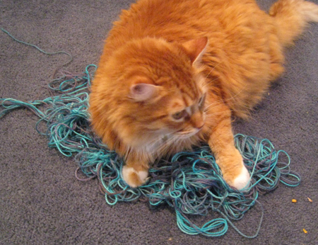 Yarn-winding disaster