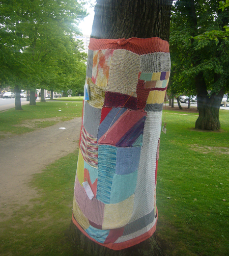 Yarn Bombing in Halifax