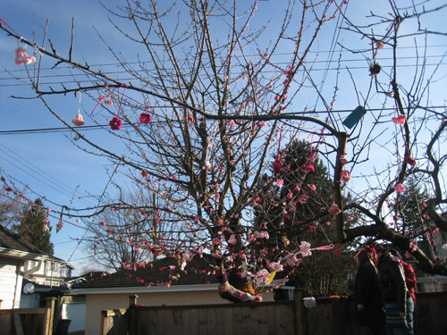 Yarnbombed Cherry Tree complete