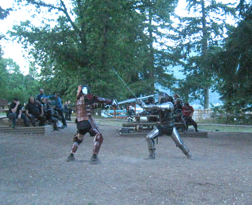 Fighting with longswords in the Heavy Tournament